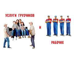 Грузоперевозки. Недорогие услуги опытных грузчиков. - Фотографии 3/4
