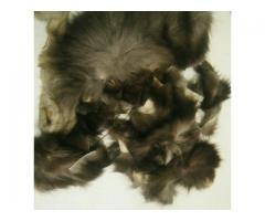 Обрезки  натурального, качественного меха, кожи