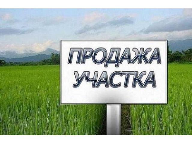Продам СРОЧНО свой приватизированный участок - 1/1