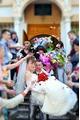 Фотограф на свадьбу, банкет, крещение